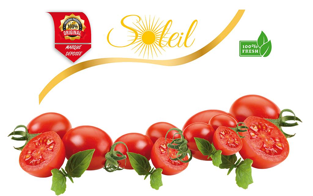 Tomato Paste_